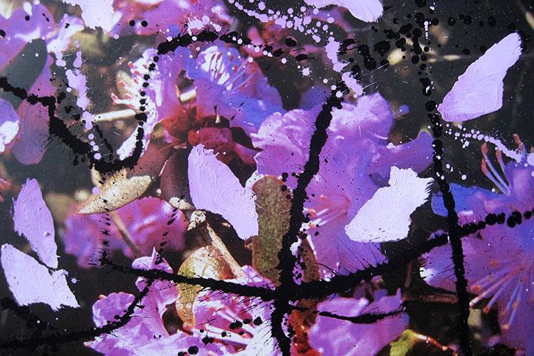 Pigment auf Foto, 52x66