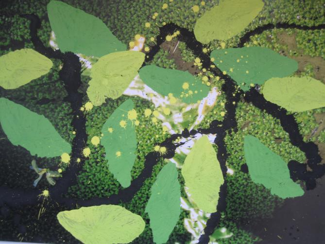 Pigment auf Foto 30x44