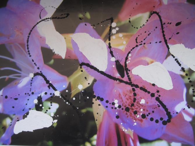 Pigment auf Foto, 30x44